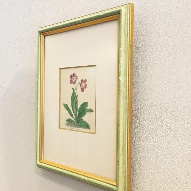 家具、その他「ボタニカルアート「プリム」(小)」