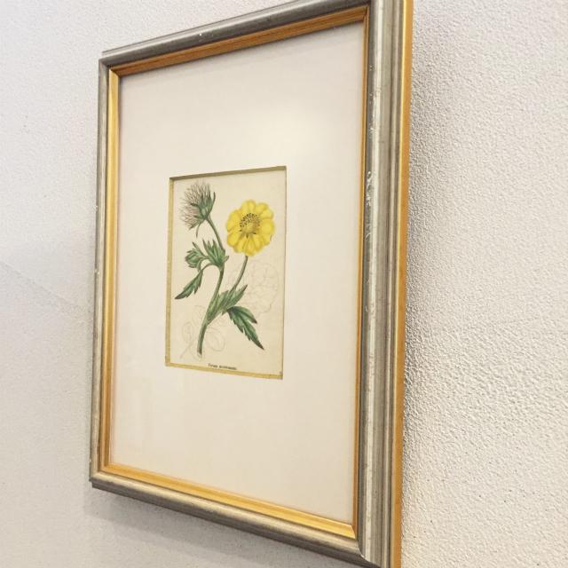 家具、その他「ボタニカルアート「ゲウム」(小)」